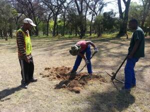 Spruit Day preparations